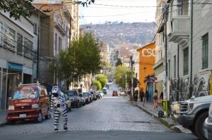 La Paz Zebras Regeln den Verkehr