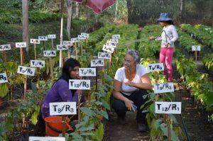 In der El Ceibo-Baumschule in Sapecho